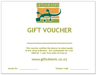 $100 Gift Voucher (Sent by Courier)